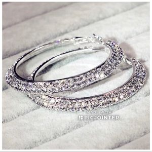 Jewelry - Silver Tone Double Row Crystal Hoop Earrings NWT